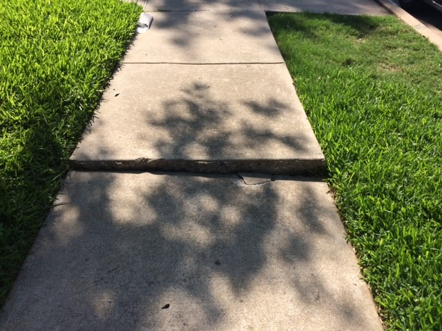 Sidewalk Need Repair